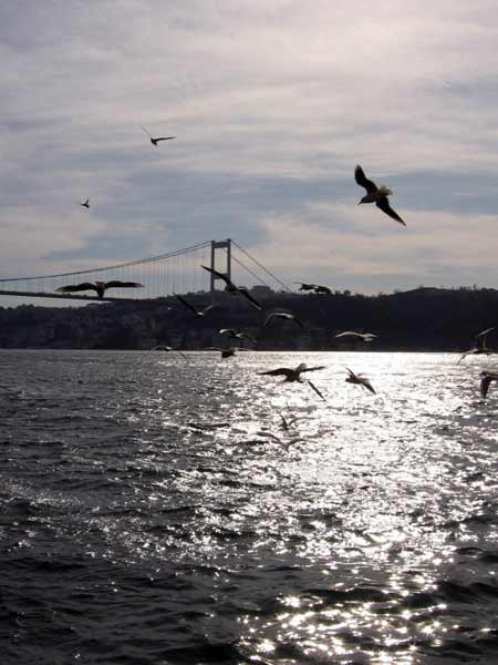 istanbul city info